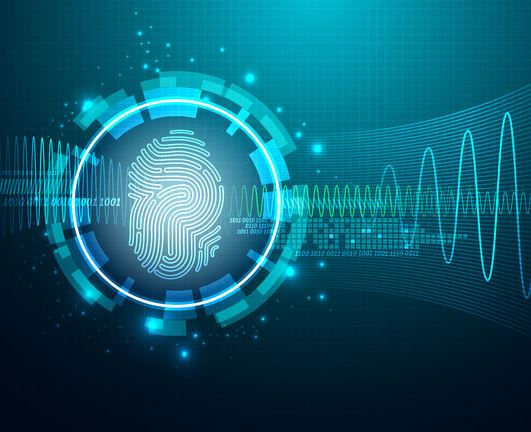 securitysystems-biometria